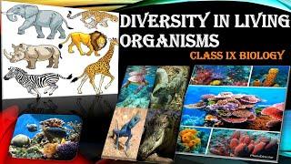 Diversity In Living Organisms Class 9 Biology Full Chapter