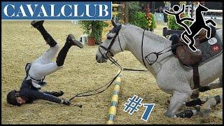 Zap cheval #1