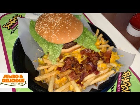#3 Shaggy's Burgers, Huntsville, AL - BURGER WARS