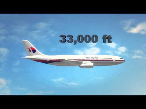 Malaysian Airlines plane crash: passenger jet shot down over Ukraine, 295 dead