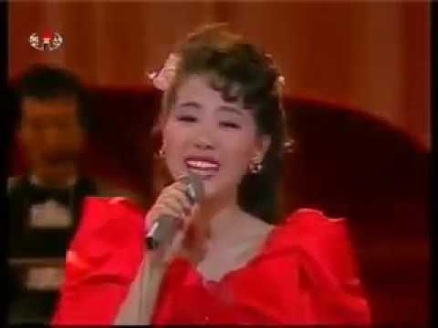 "Pochonbo Electronic Ensemble (Ri Kyong Suk) - ""People's Sovereignity Song"" (인민 주권가)"