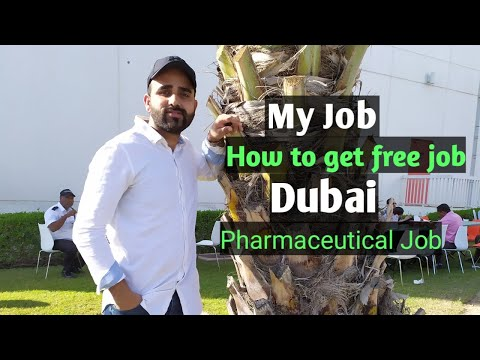 Dubai UAE Pharmaceutical Job🔥 My Job In Dubai🔥 Job In Dubai UAE #Dubai#Pharma ! Panka JHImachali.