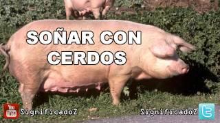 Video Significado de Soñar con Cerdos | Chanchos download MP3, 3GP, MP4, WEBM, AVI, FLV November 2017