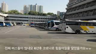 [여행]서울에서강릉 동부고속버스 2014년 응답하라