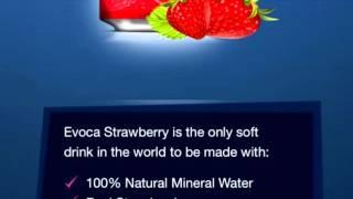 EVOCA cola new