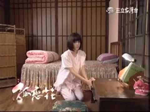 孤恋花11集