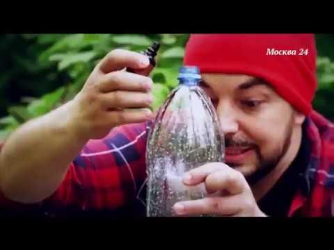 Что на самом деле разливают в бутылки под видом питьевой воды