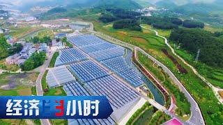 《经济半小时》贵州脱贫攻坚:决胜的最后冲刺 20200527 | CCTV财经