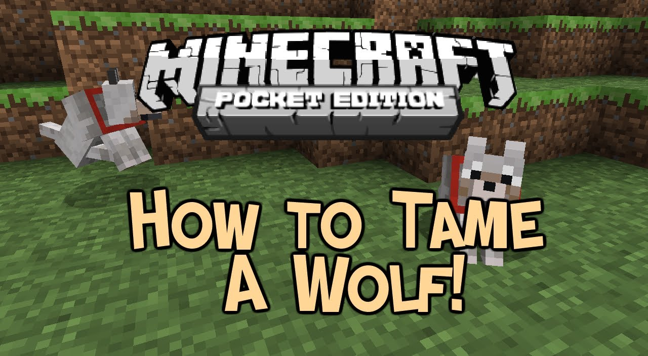 how to tame wolves in minecraft 1.13
