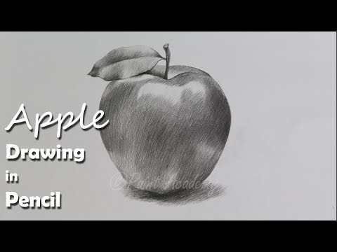 how-to-draw-an-apple-in-pencil-|-step-by-step-how-to-use-pencil-strokes