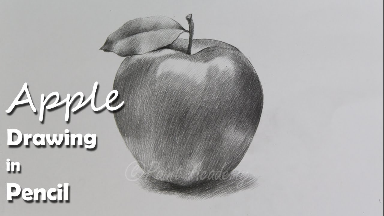 Apple Sketch Pencil Painting