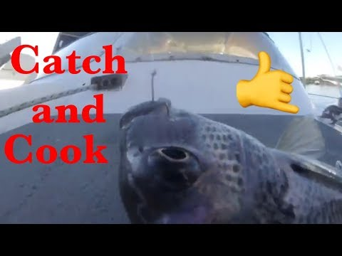 Fishing In Brunswick Heads