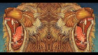 The Transformations Of Language Under The Influence Of The Psychedelic Experience (Terence McKenna)