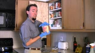How to Identify Pantry Pests