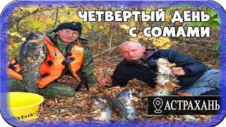 Рыбалка в Астрахани И снова Сом День четвертый