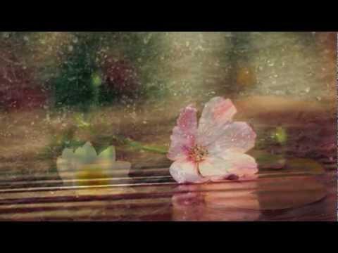 Bunga Terakhir - Afgan