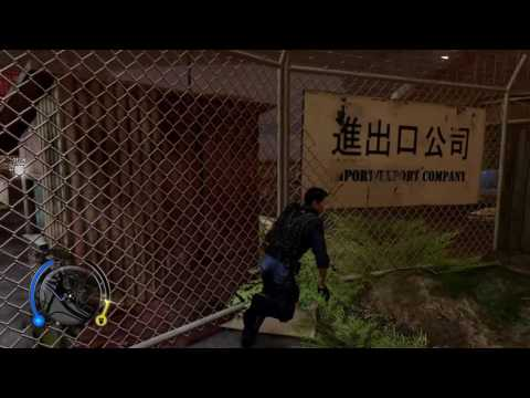 Sleeping  dogs : evidence bag