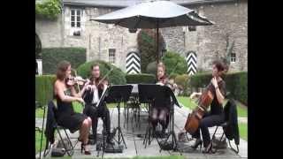 Tom and Jerry-  Scotch Reel - Diamond String Quartet