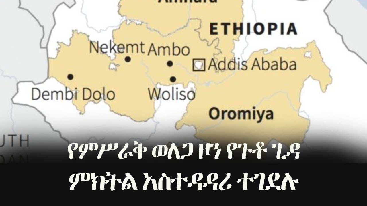 The Vice-President of the East-Woreda Region welega zone,  was killed