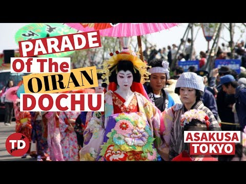 PARADE of the OIRAN DOCHU procession in ASAKUSA | GEISHA and OIRAN in JAPAN | WHAT'S the DIFFERENCE?