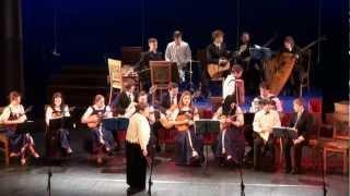 Koncerts Jaungada prieks 13.01 2013 VEF kp.lielajā zālē - 00002.MTS