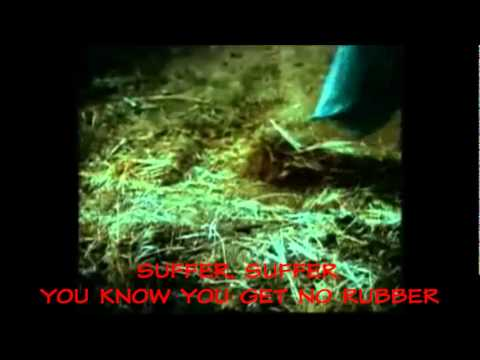 The Flys - Got You (Where I Want You) [Videoke]