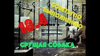 Open 18.4 как делать? СРУЩАЯ СОБАКА/сайт Богачева