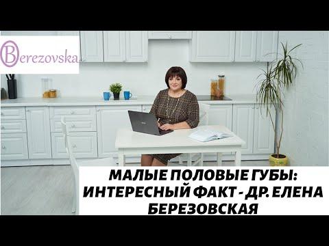 Малые половые губы: интересный факт - Др. Елена Березовская