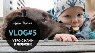 VLOG #5 Утро с нами, секрет терпения, ребенок и собака   3.04-5.04 Словения