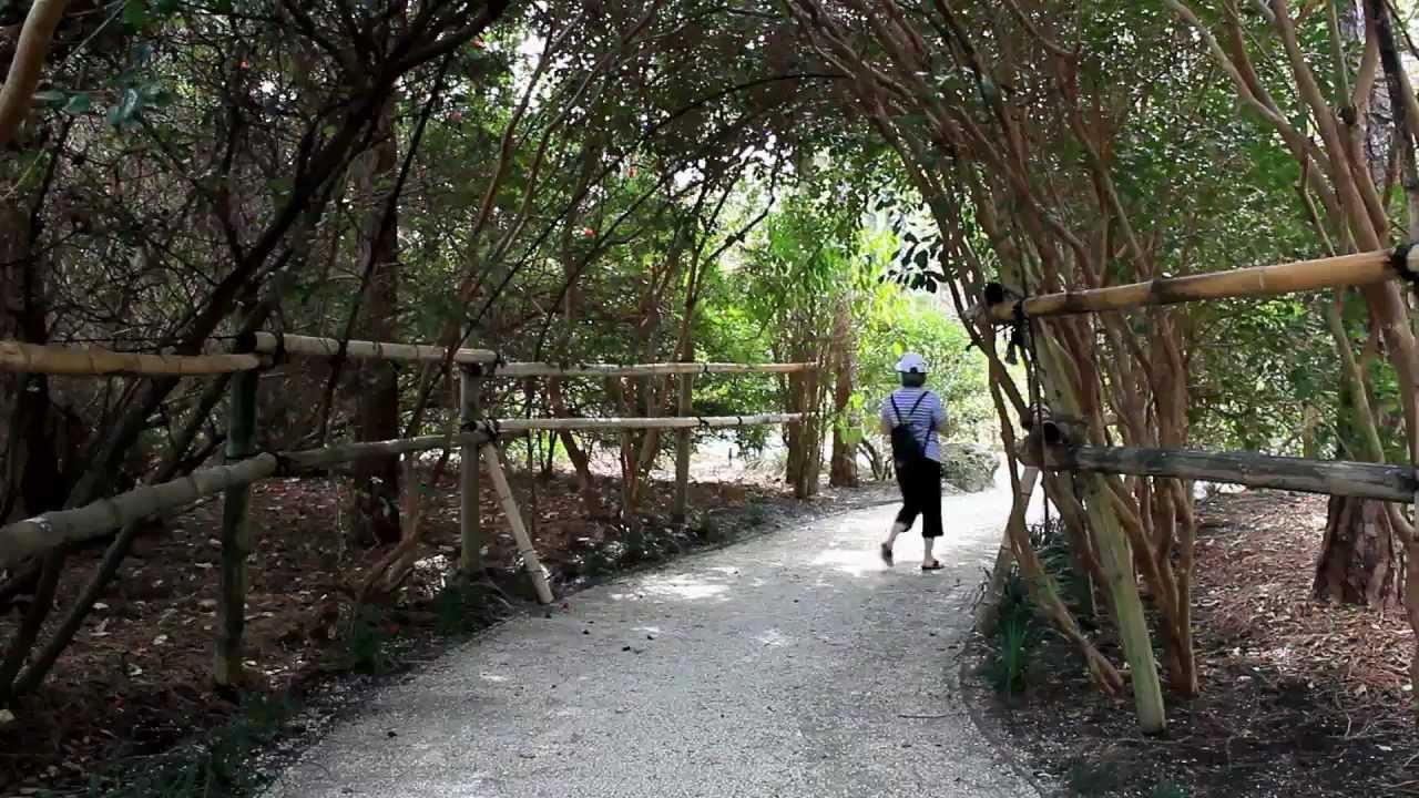 Delray Florida Jardin japonais Japanese garden Camra Canon t3i