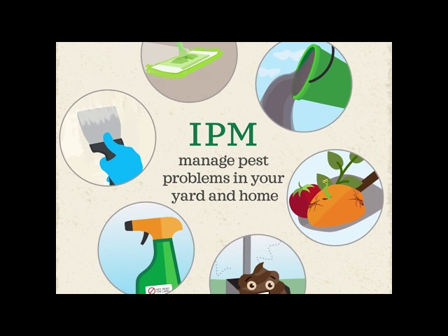 Manage Pest Problems in Your Yard and Home - IPM