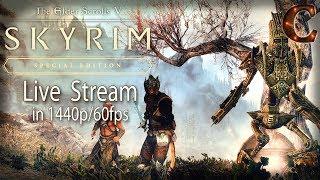 Skyrim Special Edition Stream, 1440p/60fps: Final Stream, Za'urabi Says Goodbye Forever