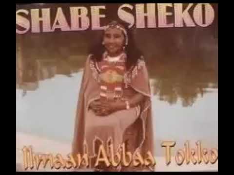"""Shabe Sheko """"Yaa Biyya Too"""""""