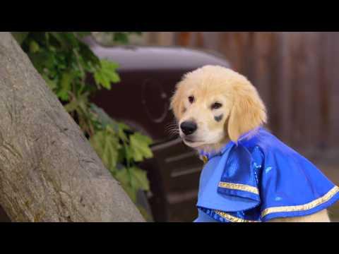 Super Buddies – Trailer