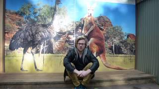 Zwierzęta Australii - Programista Na Wygnaniu