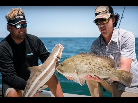 Florida Sportsman Watermen - Crystal River Grouper Madness With Dan Clymer