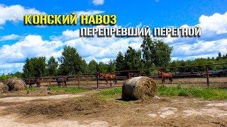 видео Купить песок в Климовске с доставкой по выгодной цене