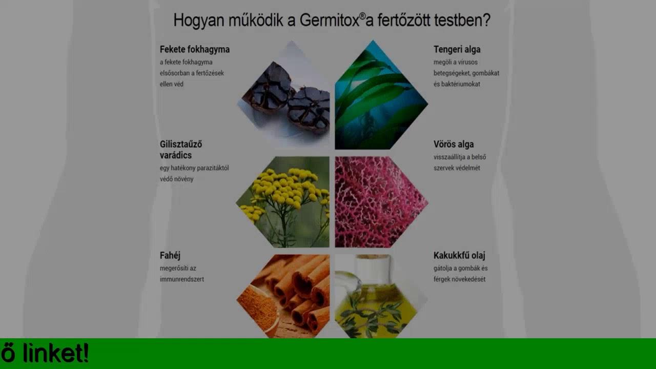 orvossag a parazitak az emberi test attekintese)
