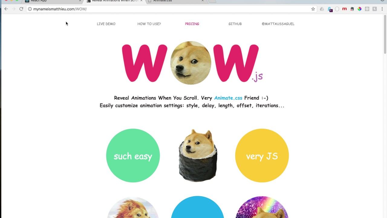 Coder Chick - How To Add Animations by Using WOW js in React