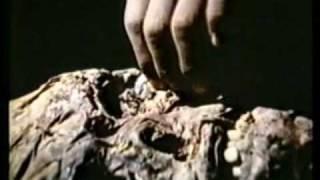 Nova Guiné Ilha de canibais 1974 parte 1/10