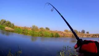 Рыбалка со спиннингом с берега ловля щуки и судака