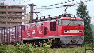 レッドサンダーEF510-16牽引高速貨物3098レ 札幌→福岡 信越本線上り