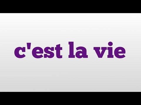 c'est la vie meaning and pronunciation