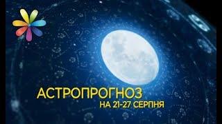 Гороскоп с 21 по 27 августа от Хаяла Алекперова + субт. – Все буде добре. Выпуск 1073 от 21.08.17