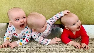 TOP 10 | Cutest Triplets Baby Make you LAUGH super HARD | Funny Babies and Pets