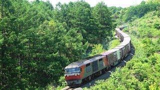 【宇宙軒カーブ】DF200牽引の貨物列車
