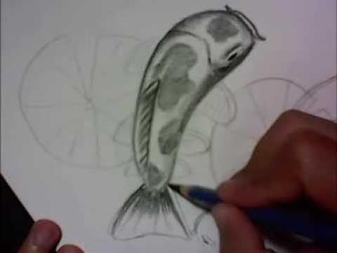 cara menggambar ikan koi dengan pensil - YouTube