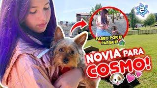UNA NOVIA PARA COSMO!! PRIMERAS COMPRAS NAVIDEÑAS!! VLOGMAS 2 🎄03 Dic 2019 | Leyla Star 💫