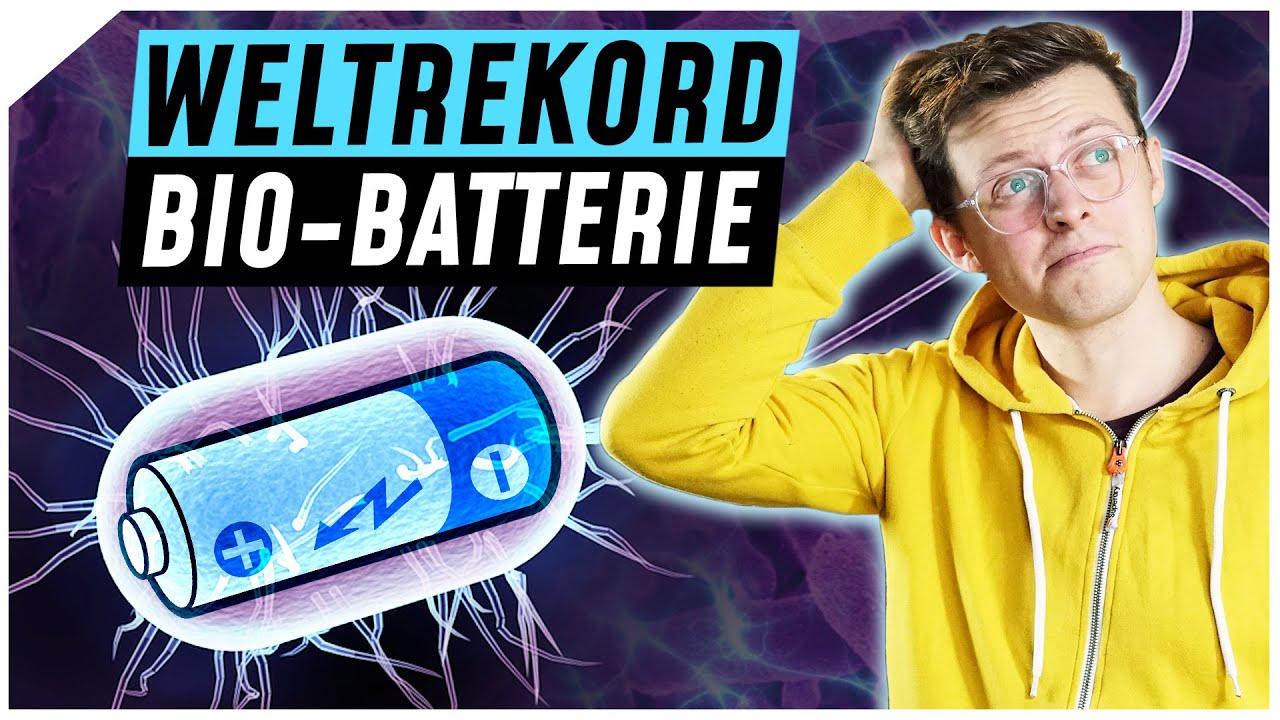 Diese Batterie wird mit Bakterien betrieben | Breaking Lab