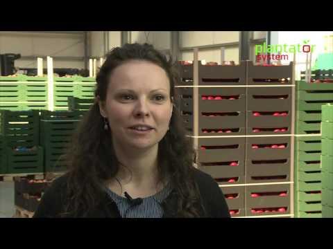 Plantator System - Fruit Logistics